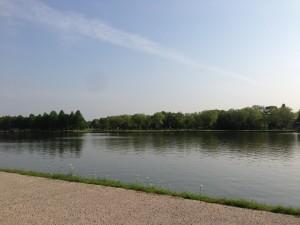 水元公園 良い天気