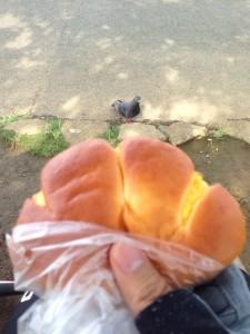 足立区鹿浜のベーカリーブランカ クリームパン