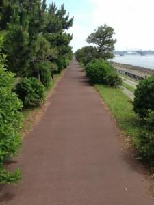 若洲公園、海沿いの裏道