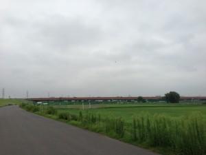 彩湖へ、戸田南の橋を左岸へ移動