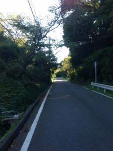 大福山林道の登りはじめ