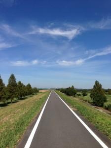 榎本牧場へ向かうサイクリングロード